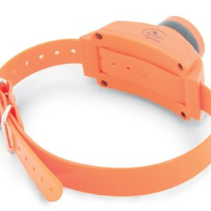 Beeper Collar